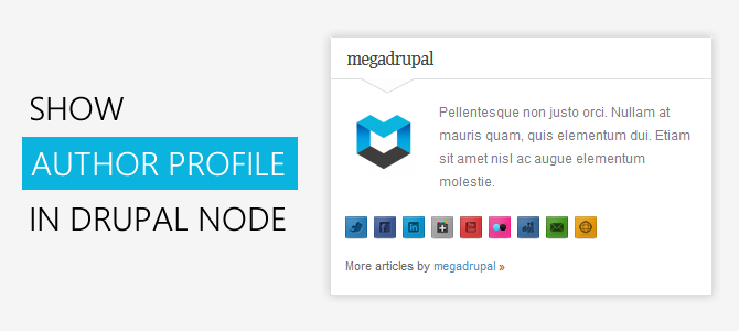 Show author profile block in Drupal node